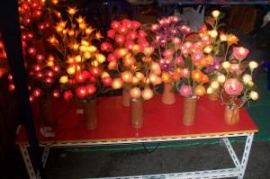 Blumen aus Zentralthailand